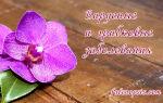 Вирусные и грибковые заболевания орхидей