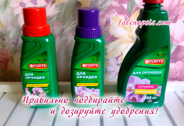 Удобрения Forte для орхидей